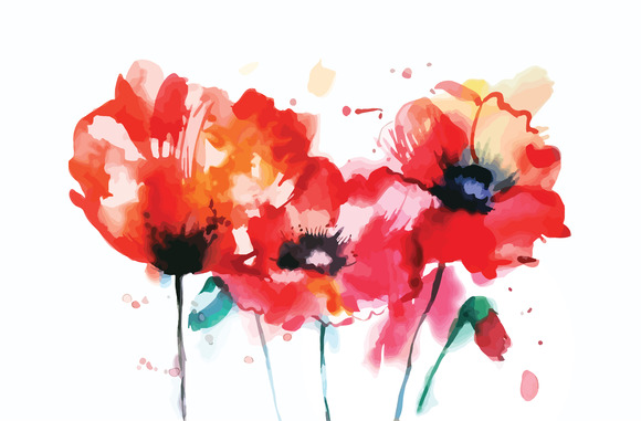 Watercolor Poppy Flower
