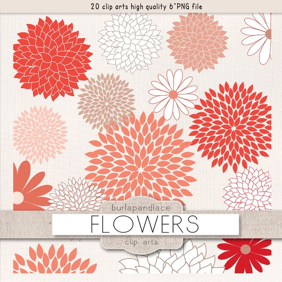 Flowers Coral Red