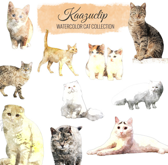 Watercolor Cat Collection