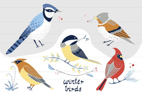 Winter Birds PNG Clip Art