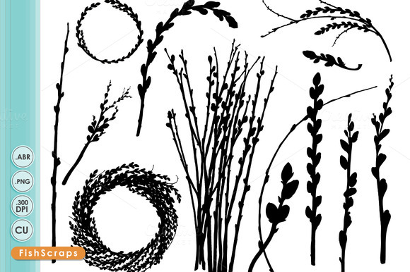 Willow Branch Png Brushes