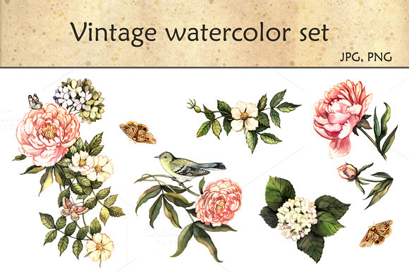 Vintage Watercolor Set