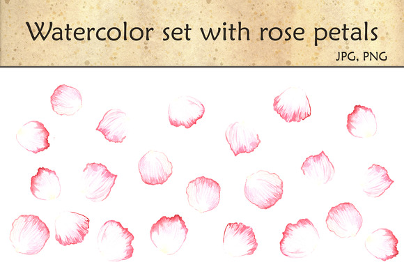 Watercolor Set With Rose Petals