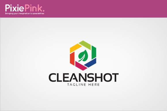 Clean Shot Logo Template