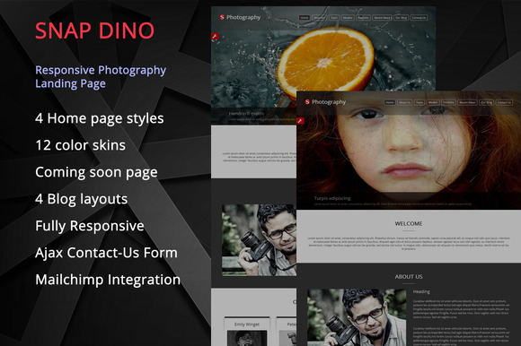 Snap Dino Photography Landing Page
