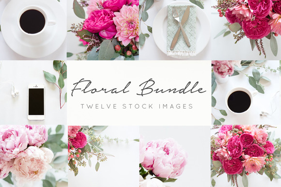 Styled Stock Photos FREE Blog Header