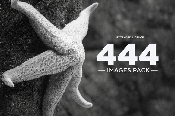 444 Images Pack Extended Licence