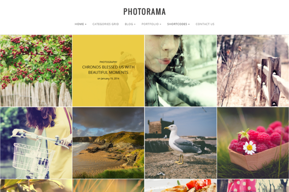 Photorama Photography WP Theme