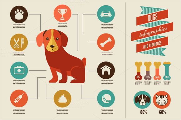 Dogs Infographic Icon Set