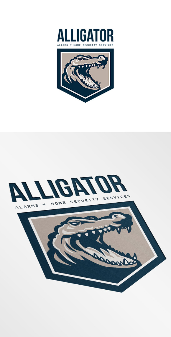 Alligator Alarms And Home Security L