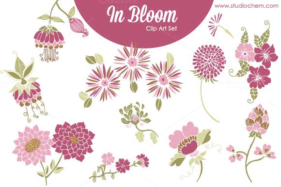 In Bloom Pink Florals PNG Clip Art
