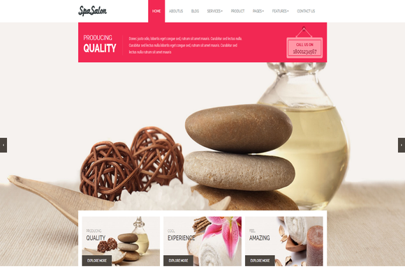 Spasalon Premium WordPress Theme