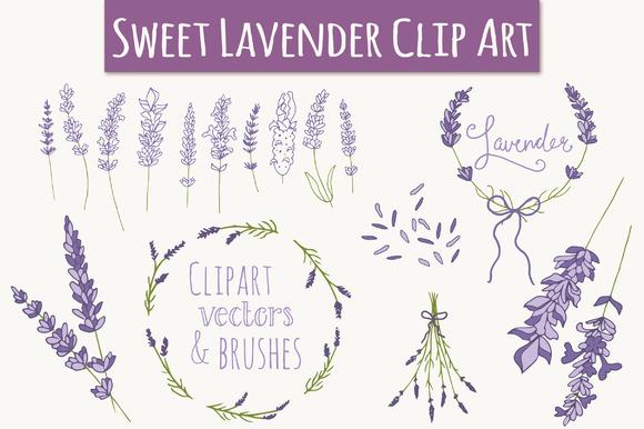 Lavender Clip Art Vectors