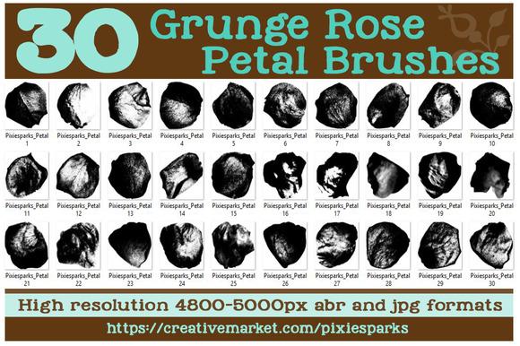 30 Grunge Rose Petal Brushes