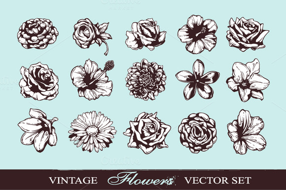 Hand-drawn Flowers Set