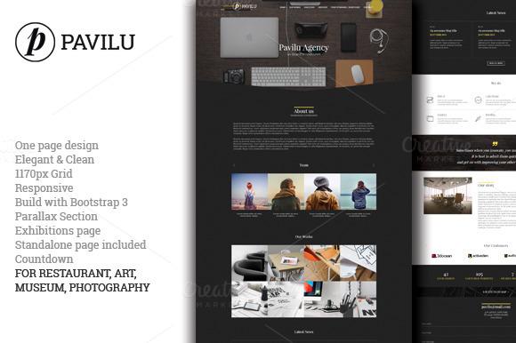 Pavilu One Page MultiPurpose Theme