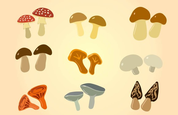 Cartoon Color Mushrooms