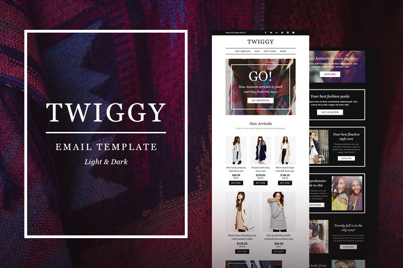 Twiggy E-Newsletter Builder Access