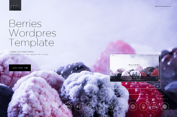 Berries Multipage Wordpress Theme
