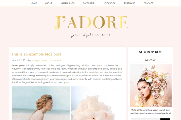 Wordpress Theme Jadore Blog Theme