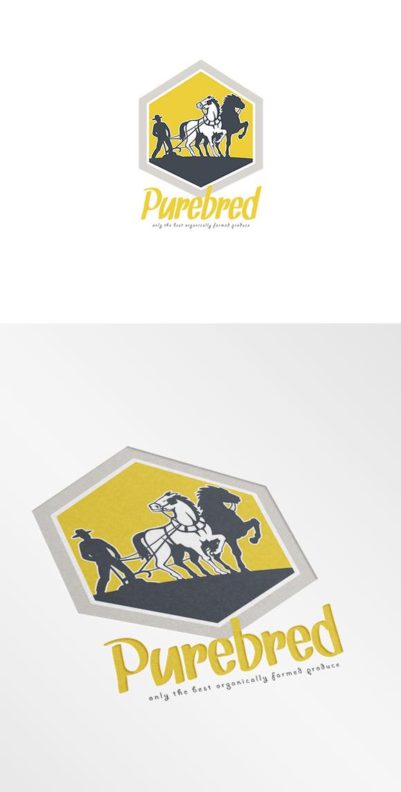 Purebred Organic Farm Produce Logo