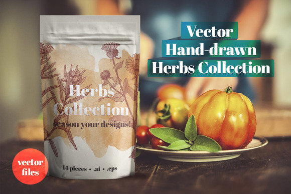 Vector Herbs Collection