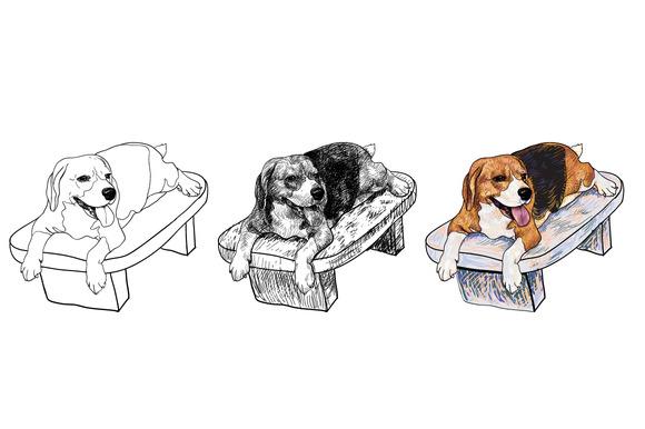 Beagle On Chair
