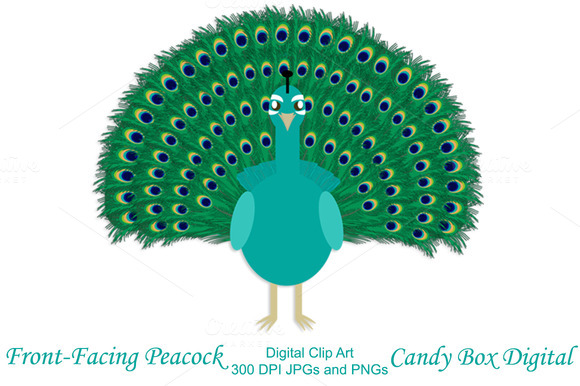 Front-facing Peacock Clip Art