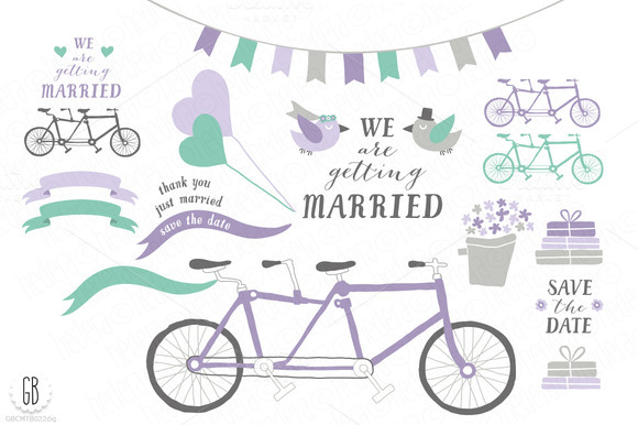 Tandem Bicycle Wedding Lavender