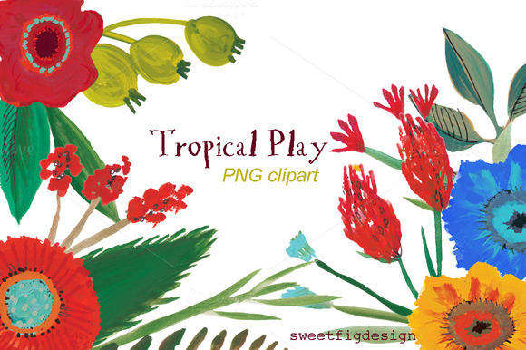 Tropical Play