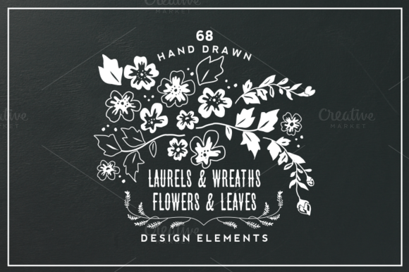 Hand Drawn Flowers Leaves Elements