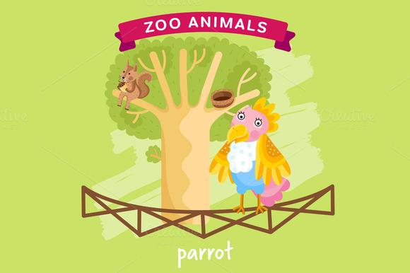 Zoo Animal Parrot