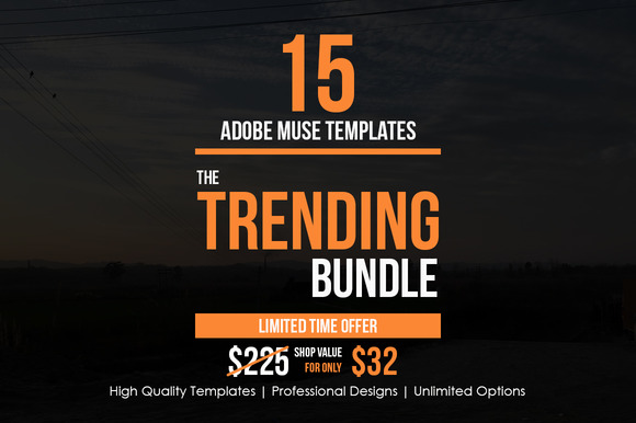 The Trending Adobe Muse Bundle