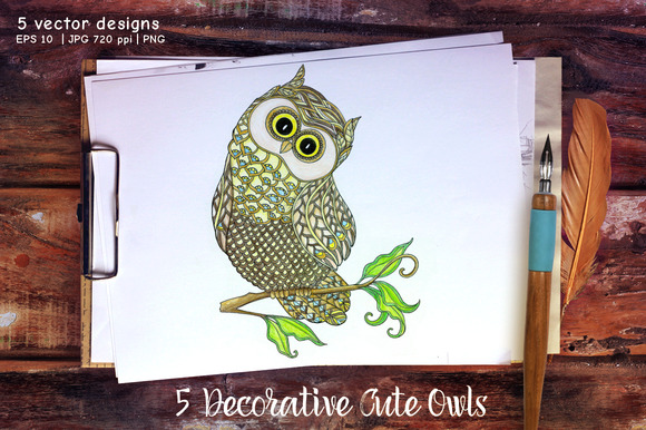 5 Decorative Cute Owls