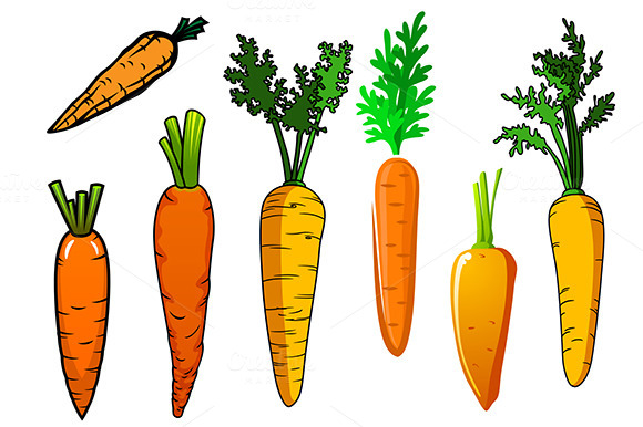Fresh Ripe Orange Carrot Vegetables