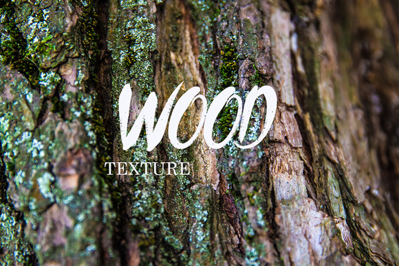 Willow Tree Texture Bundle
