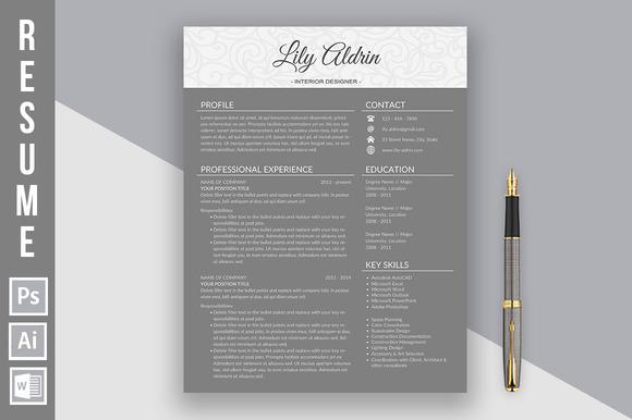 Resume Template Lily Aldrin Dark