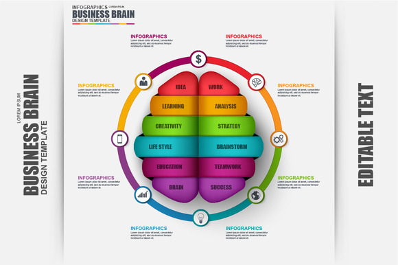 Business Infographics Brain Vector