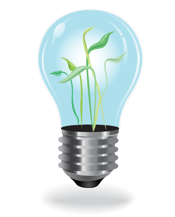Growing Plants Bulb