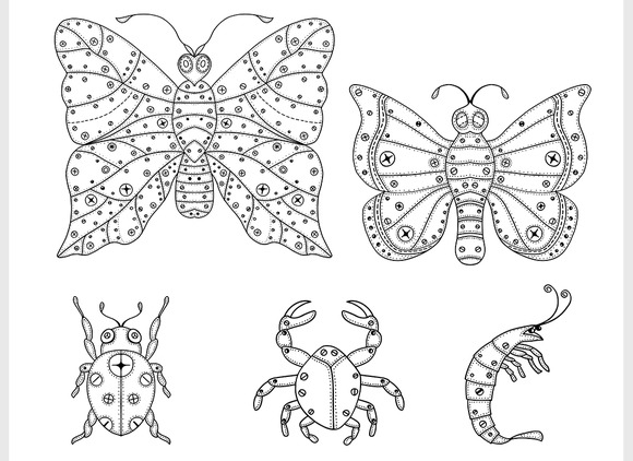 Vector Insects Illustration