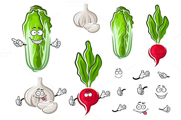Chinese Cabbage Garlic And Radish