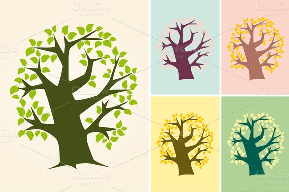 Big Tree Four Seasons