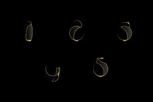 Golden numerals