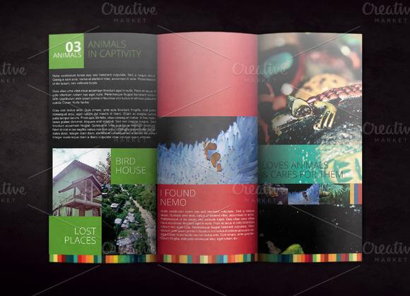 Tri Fold Brochure Mockup 04