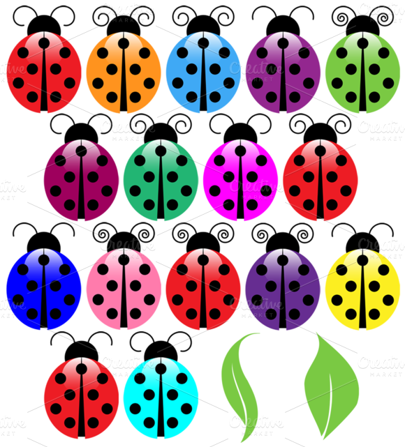 Ladybugs Vectors And Clipart