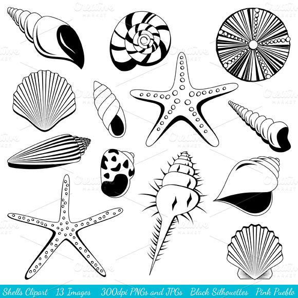 Shells Silhouettes Vectors Clipart