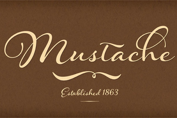 Hummingbird Bold Script Fonts On Creative Market