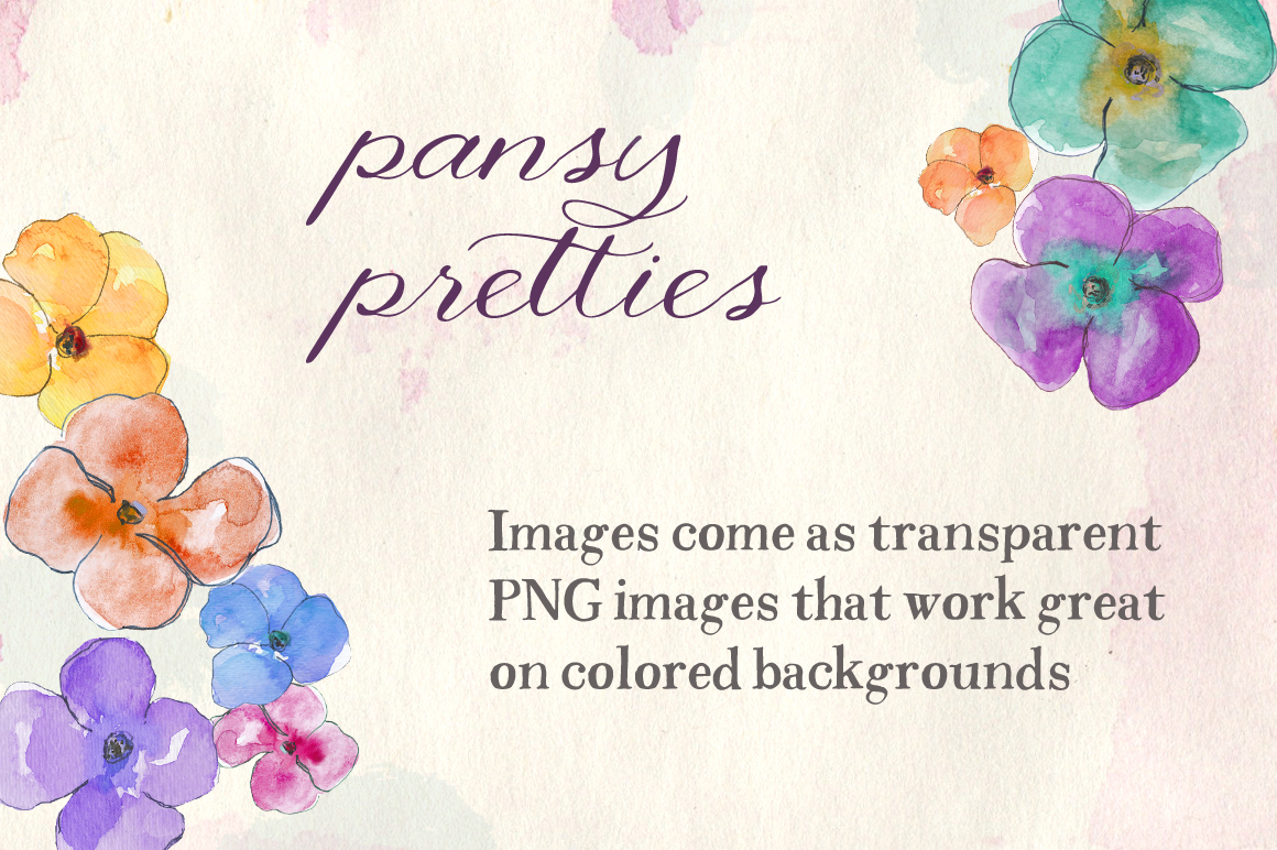 watercolor pansies illustrations on creative market