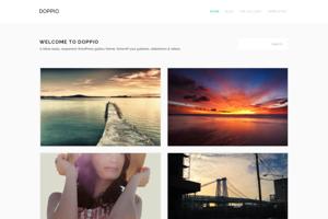 Doppio - Retina WordPress Theme
