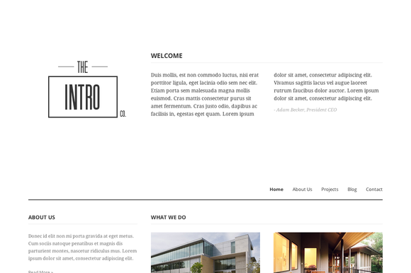 IntroCo WordPress Theme